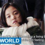 オー・マイ・クムビ 16話 動画