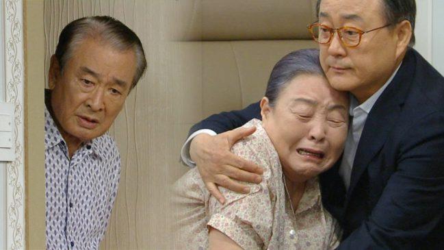韓国 ドラマ ケセラセラ キャスト